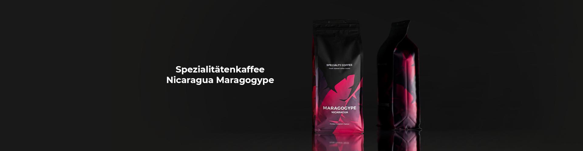 Spezialitätenkaffee Nicaragua Maragogype